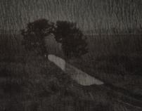 Polaroid V