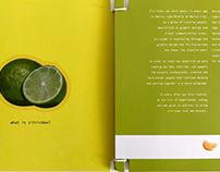 Zitricbox presentation brochure