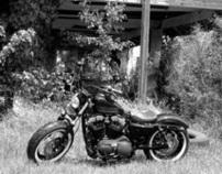 biker art