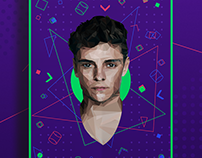 Martin Garrix Low Poly
