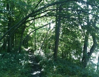 2012 July 31 - Hiking in Kains Woods, London ON