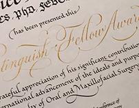 Handwritten certificates for IAOMS.