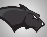 Pine View Panthers