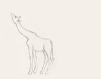 Sketching animals