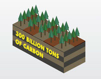 Infographic: Deforestation & How volcanoes work