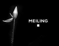 Re-Branding Fashion Brand, Meiling