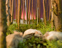 Miniature Forest Construction