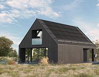 Exterior 3D Render of Private House, Estonia