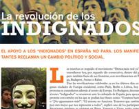 Political Magazine