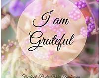 gratitude daily motivation meditation and affirmations