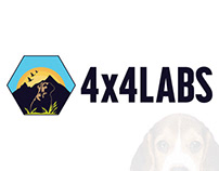 4 x 4 Labs Concept
