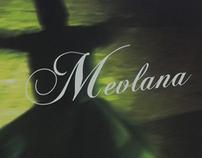 Mevlana Book