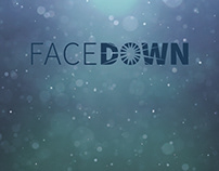 FaceDown Leadership Development