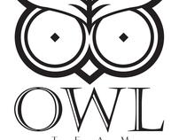 OWL TEAM