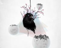 O Corvo // The Crow