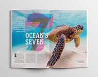 Magazine Sea turtle Feature