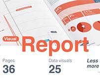 Visual Report