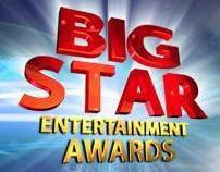 BIG STAR ENTERTAINMENT AWARDS 2010