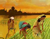 Indian Rice Illustration