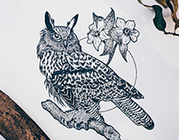 Bird tattoo illustrations - Inktober 2017