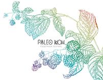 Paleo Now - Food truck Festival