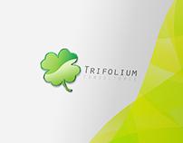 Brand Identity - Trifolium