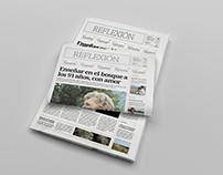 DIARIO/NEWSPAPER: REFLEXIÓN