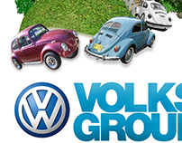 VOLKS GROUP