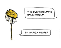 The Overwhelming Underwhelm