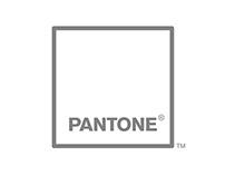 Pantone Identity