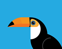 Toco Toucan Illustration