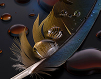 Feather - Focus Stacking