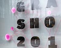 MICA Grad Show 2015