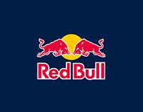 Red Bull / Shoei / Fabio Di Giannantonio Moto3 helmet