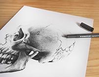 Cráneo a Puntos