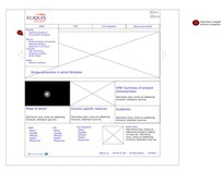Global website templates - Site map, wireframes