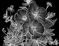 Flowers lines - Illustration