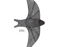 B.H. - My Bird