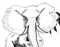 Elephant Illustrations