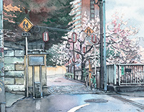 Cherry Blossoms near Edo river