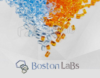 Web Design - Boston Lab