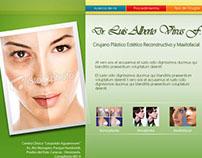 Diseño de la página web del Dr. L.A. Vivas