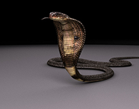 VFX Texturing Show Reel - Indian Cobra