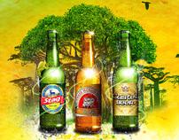 """Castel """"les nouvelles bières de l'océan Indien"""""""