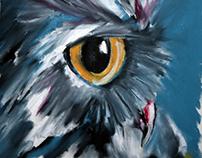 An Owl Study