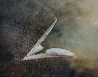 Kingdom of the Magic Heron