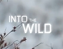 Into the Wild Movie Titles