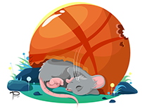 Mouse in the ball