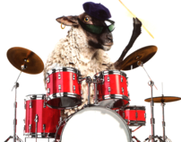 Drumming Sheep [produced]