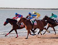 Horses Race in Andalucia Beach